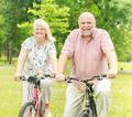 Happy Elderly Couple Active  - PhotoDune Item for Sale