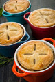 Homemade potpies - PhotoDune Item for Sale