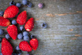 Wild berries on wood background - PhotoDune Item for Sale