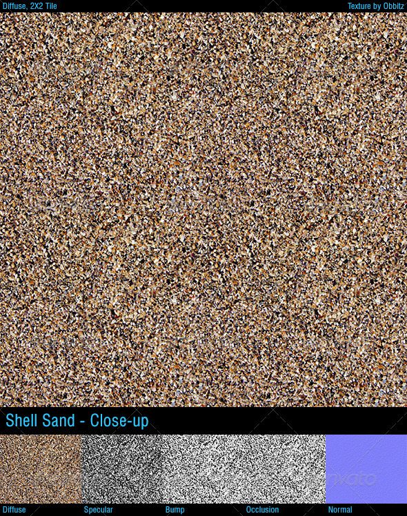 3DOcean Shell sand closeup 8566525