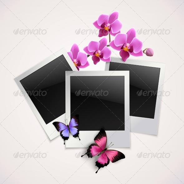 GraphicRiver Butterflies Photo Frames 8568290