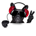 dj dog - PhotoDune Item for Sale
