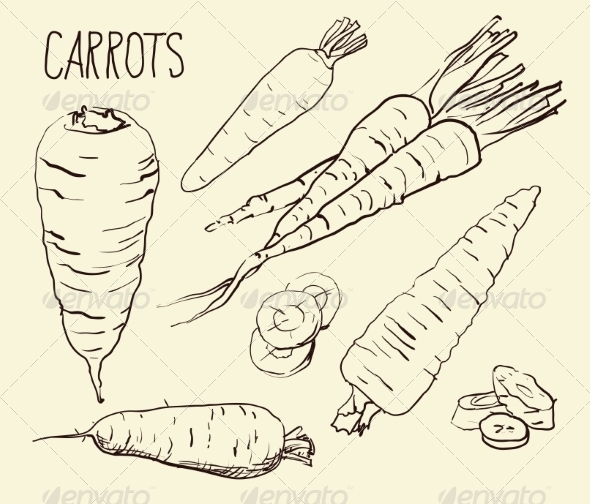 GraphicRiver Carrots 8586128