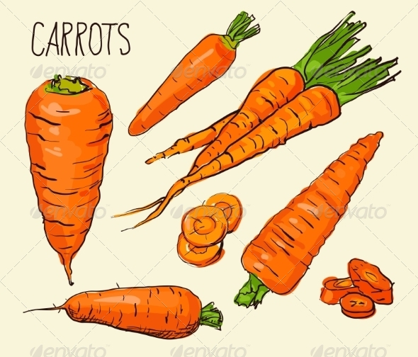 GraphicRiver Carrots 8586133