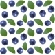 Seamless Blueberry Background - GraphicRiver Item for Sale