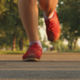 Morning Jogging - VideoHive Item for Sale
