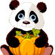 Panda - GraphicRiver Item for Sale