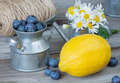 Still life with blueberries, lemon and chamomiles - PhotoDune Item for Sale