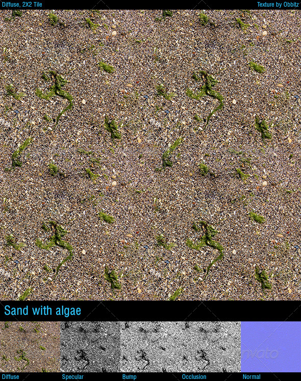 3DOcean Sand with algae 8592020