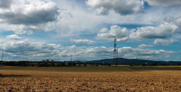 Landscape Field and Electric Poles 2