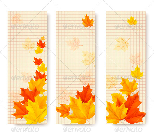 GraphicRiver Three Autumn Banners with Color Leaves 8597972
