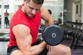 Handsome bodybuilder sitting on bench lifting dumbbell at the gym