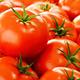Fresh organic tomatoes on street stall - PhotoDune Item for Sale