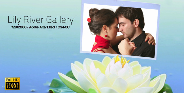 Lily River Photo Gallery
