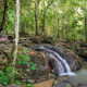 Evergreen forest waterfall  - PhotoDune Item for Sale