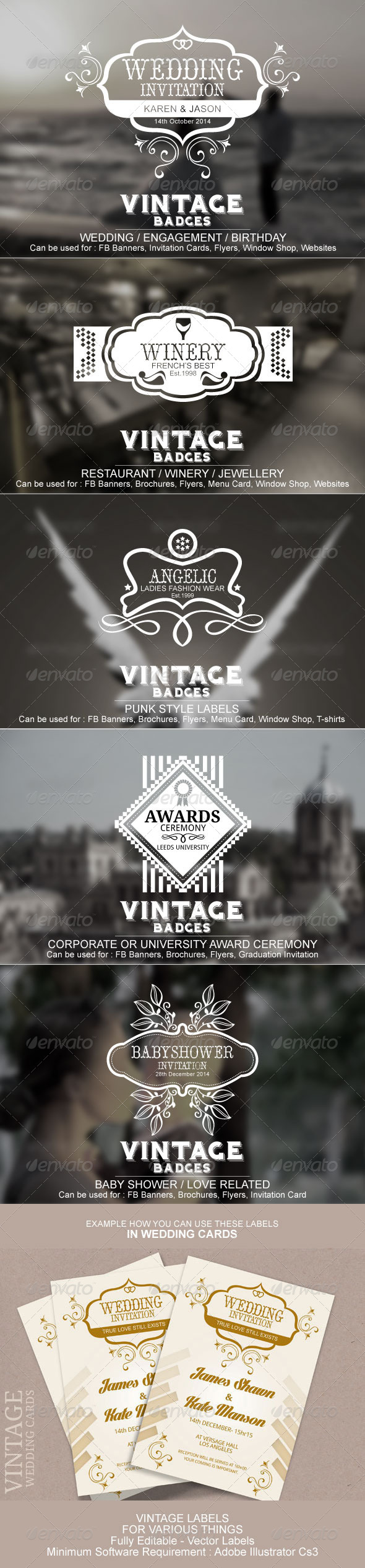 GraphicRiver Vintage Labels And Badges 8610001