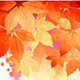 Autumn Vector Watercolor Fall Leaves - GraphicRiver Item for Sale