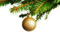 Decorative ball on fir branch - PhotoDune Item for Sale