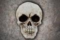 human skull - PhotoDune Item for Sale