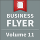 Business Flyer - Volume 11 - GraphicRiver Item for Sale