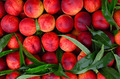 Fresh peaches background - PhotoDune Item for Sale