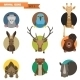 Animal Avatars. Vector Illustration - GraphicRiver Item for Sale