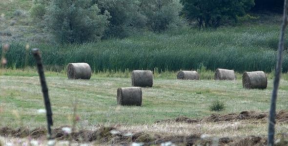 Bales Hay in Farm Field 2