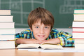 Young boy in school surrounded by textbooks - PhotoDune Item for Sale