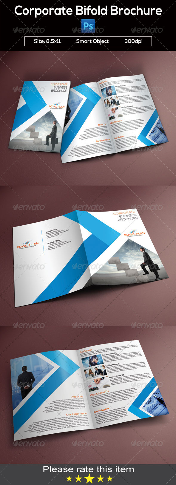 GraphicRiver Corporate Bifold Brochure 8616794