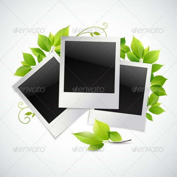 GraphicRiver Photo Frames with Green Leaves 8617612