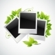 Photo Frames with Green Leaves - GraphicRiver Item for Sale