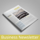 Business Newletter vol. 2 - GraphicRiver Item for Sale