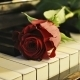 Emotional Piano Theme - AudioJungle Item for Sale