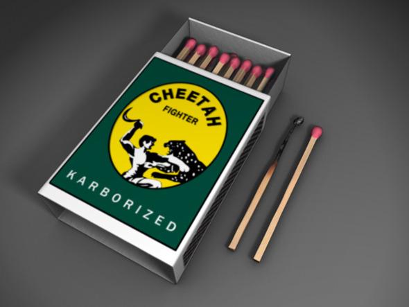 3DOcean Match Box with Match sticks 876533