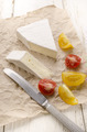 camembert and tomato on paper - PhotoDune Item for Sale