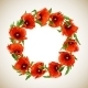 Wreath of Poppies - GraphicRiver Item for Sale