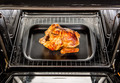 Roast chicken in the oven. - PhotoDune Item for Sale