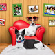 love couple sofa dogs - PhotoDune Item for Sale