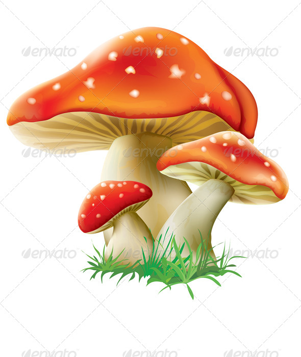GraphicRiver Three Red Mushrooms 8626973