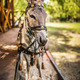 Donkey in harness - PhotoDune Item for Sale