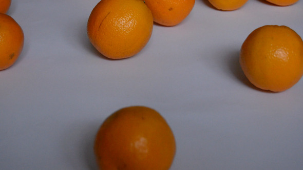 Oranges Roll on White Background