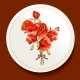 Beautiful Bouquet of Red Poppy on a White Plate - GraphicRiver Item for Sale
