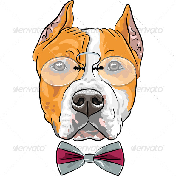 GraphicRiver Hipster American Staffordshire 8638838