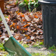 Raking Leaves - PhotoDune Item for Sale