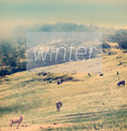 Winter Poster - PhotoDune Item for Sale