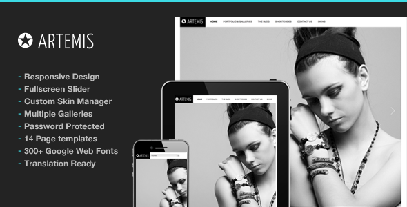 Artemis Photography Gallery Portfolio Theme - Photography Creative