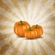 Orange Pumpkin  Background Vector Illustration - GraphicRiver Item for Sale