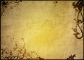 floral style textures and backgrounds frame - PhotoDune Item for Sale