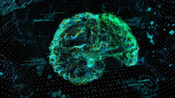 Brain Activity Hologram