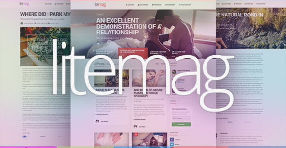 ThemeForest LiteMag Easy to use Minimalist Magazine Theme 8230483